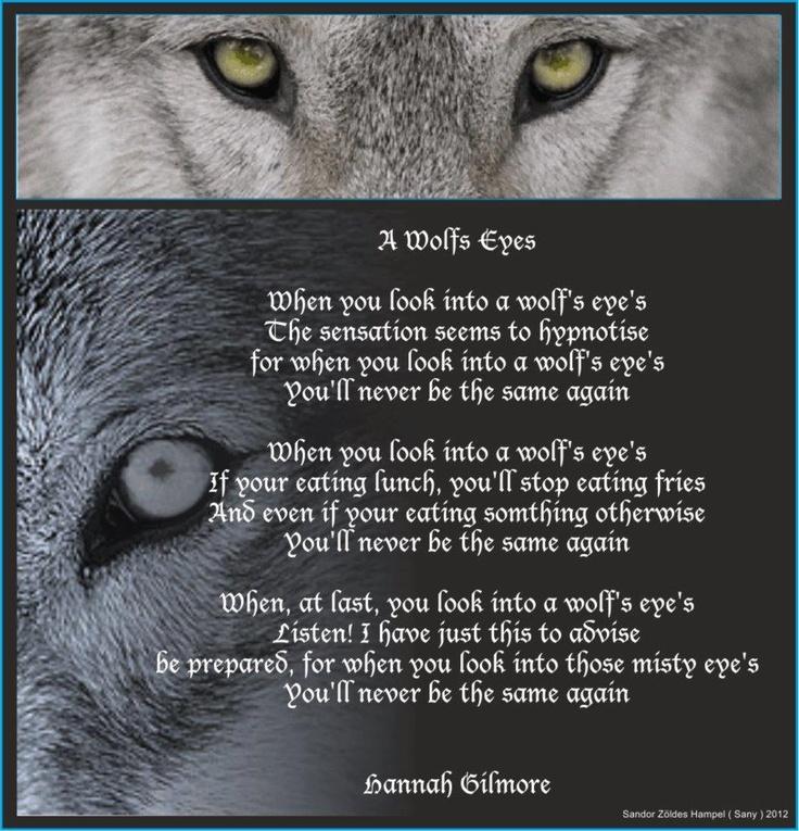 Lone Wolf Poems 60868 Loadtve