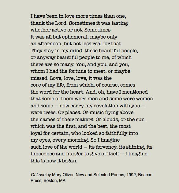 Mary Oliver Love Quotes Endearing Mary Oliver Love Poems