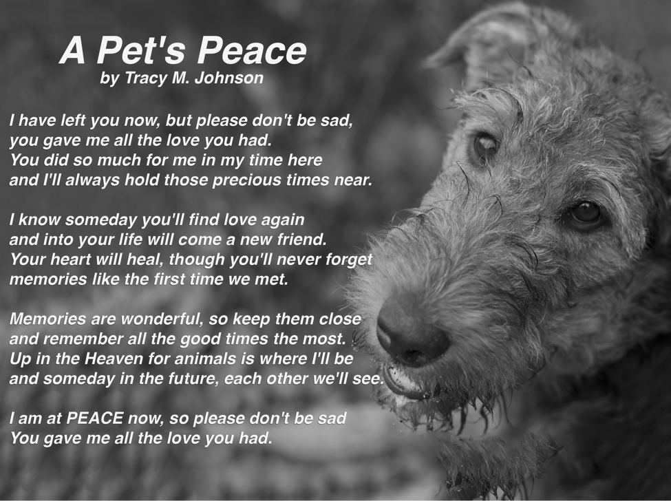Dog Grieving Poems
