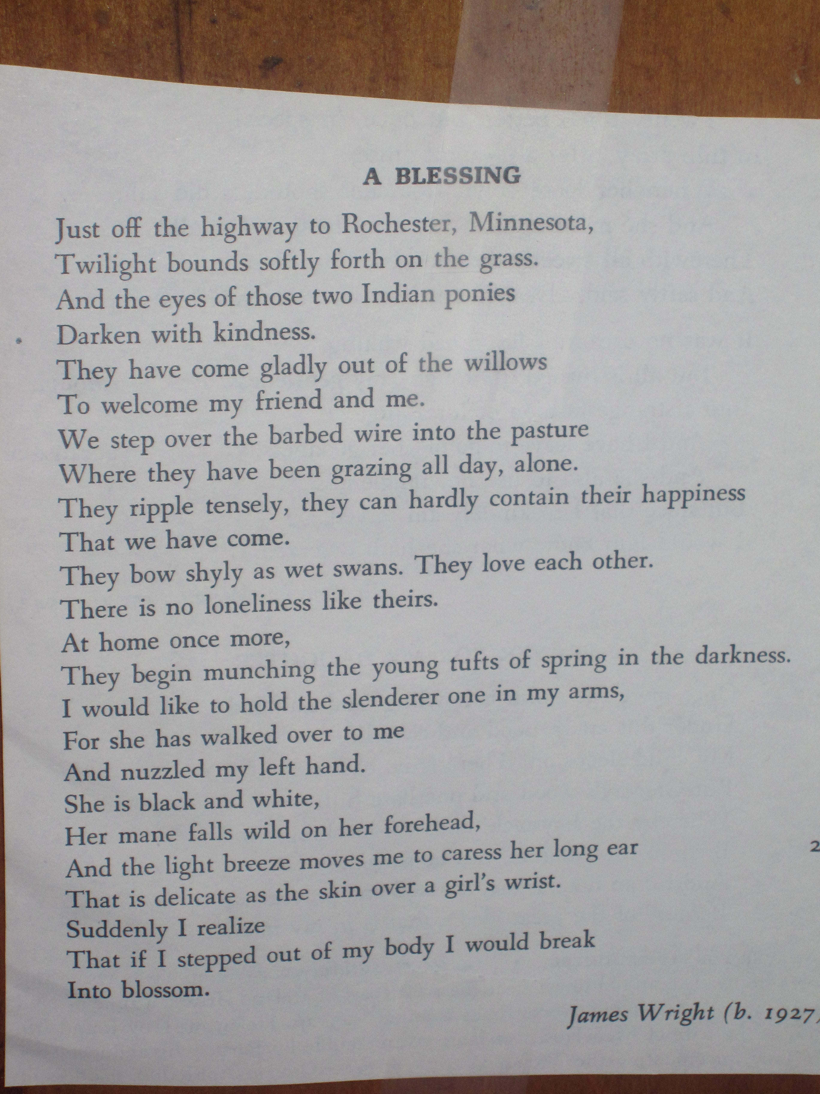 a blessing james wright A blessing is a famous poem by james wright just off the highway to rochester, minnesotatwilight bounds softly forth on the grassand the eyes of those two indian poniesdarken with kindnessthey have come.