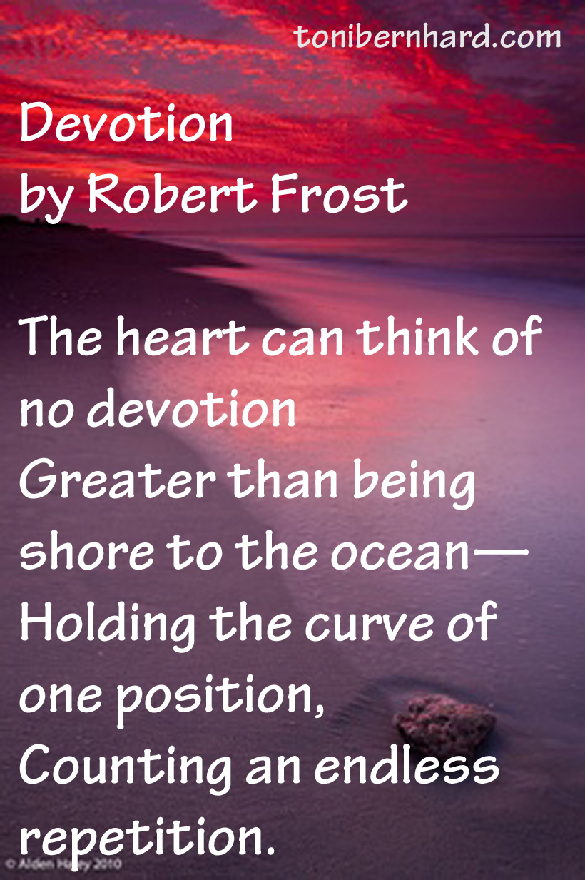 an analysis of the imagery used in robert frosts poem the most of it Robert frost - poet - one of the most celebrated poets in america and robert graves at whose inauguration the poet delivered a poem.