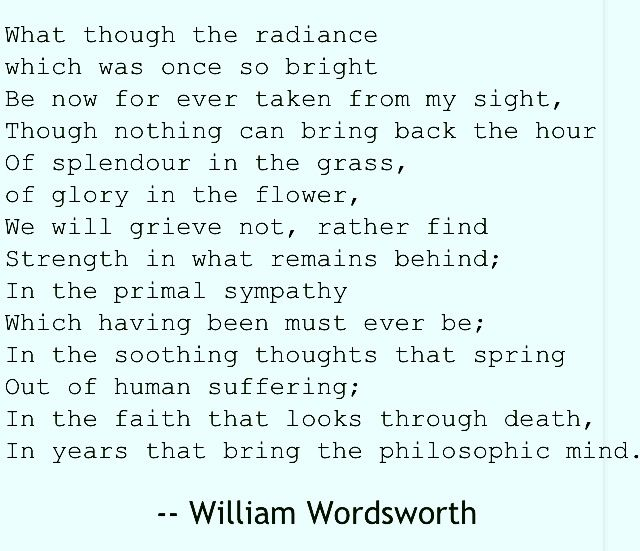 an analysis of the poem of william wordsworth Chapter summary for william wordsworth's poems of william wordsworth (selected), ode intimations of immortality summary find a summary of this and each chapter of poems of william wordsworth (selected.
