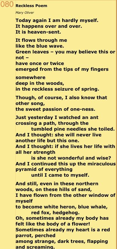 Mary Oliver Love Quotes Gorgeous Mary Oliver Love Poems
