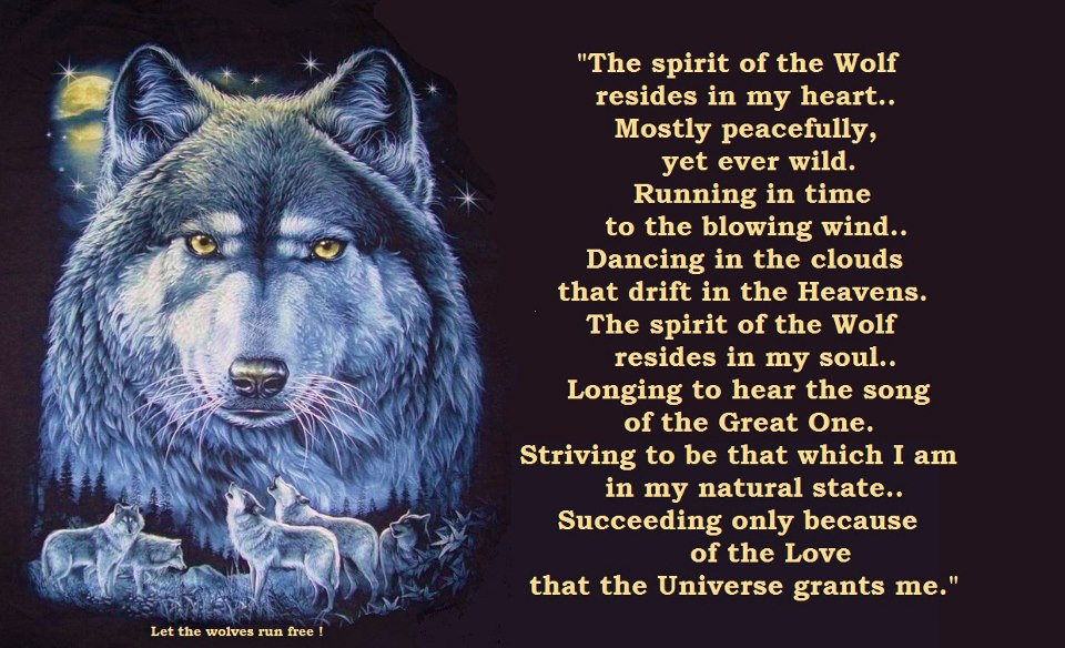 Image result for wolf love quotes