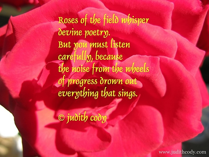 Roses Poems