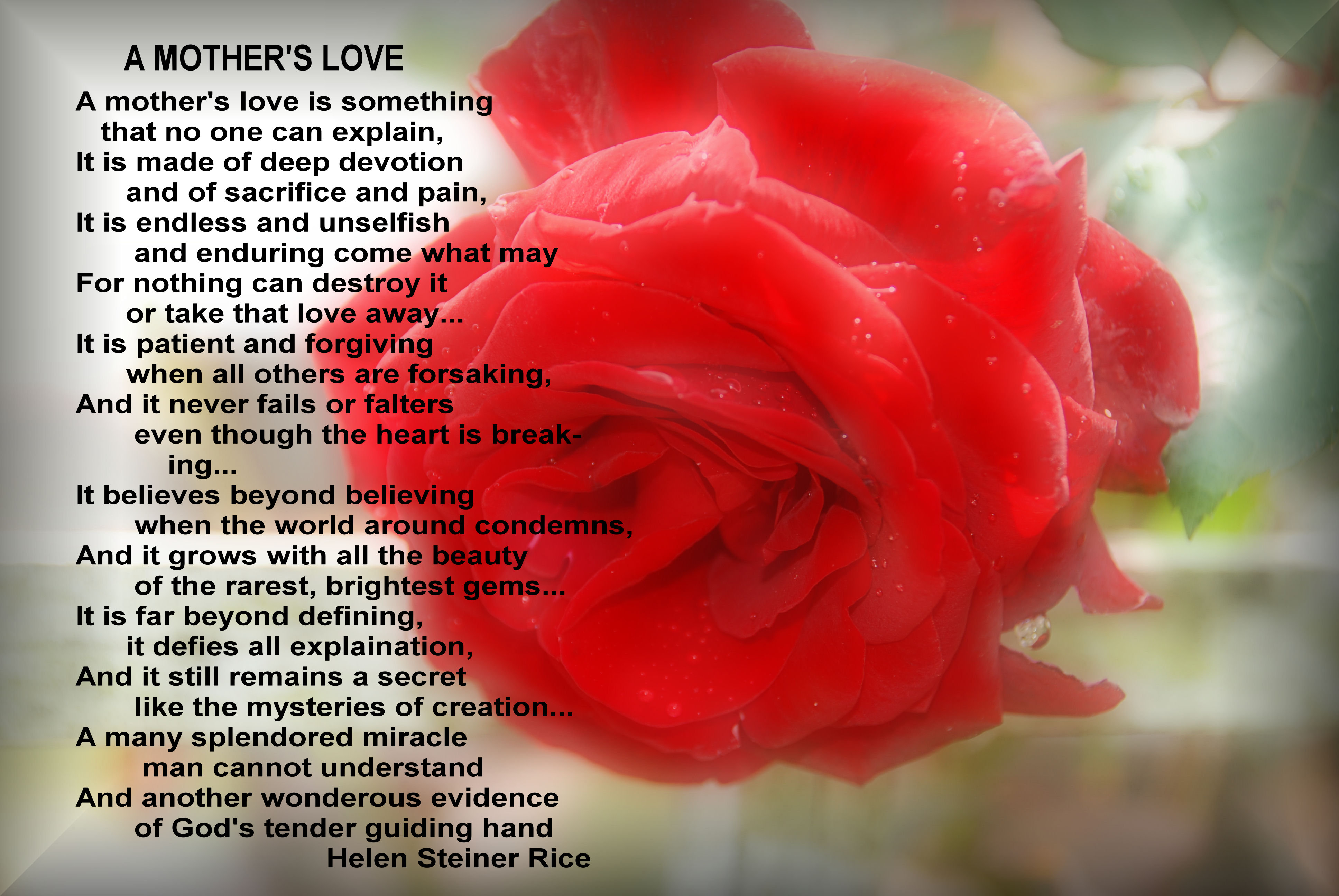 Quotes About A Mother's Love Mothers Day Love Poems