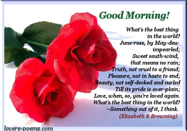 good morning orizanet portal lovers scom