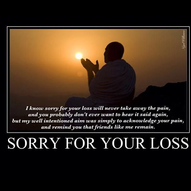 sorry for the loss essay By bridget keehan sorry for the loss plot conclusion useful quotes structure opening body analysis and interpretation gustav, jonas, søren and sidsel.