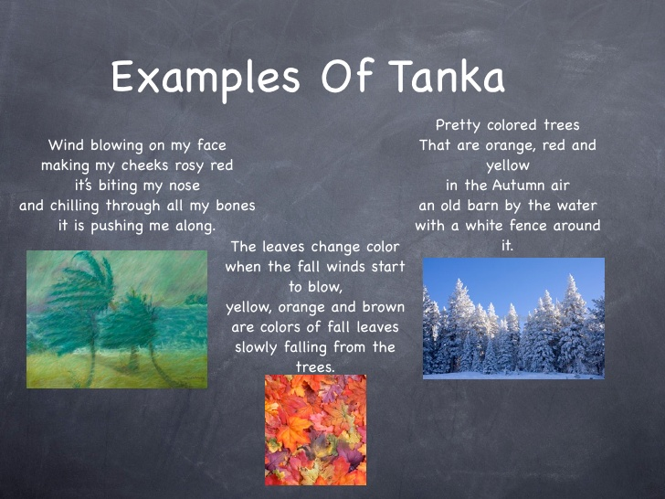 Tanka poems.