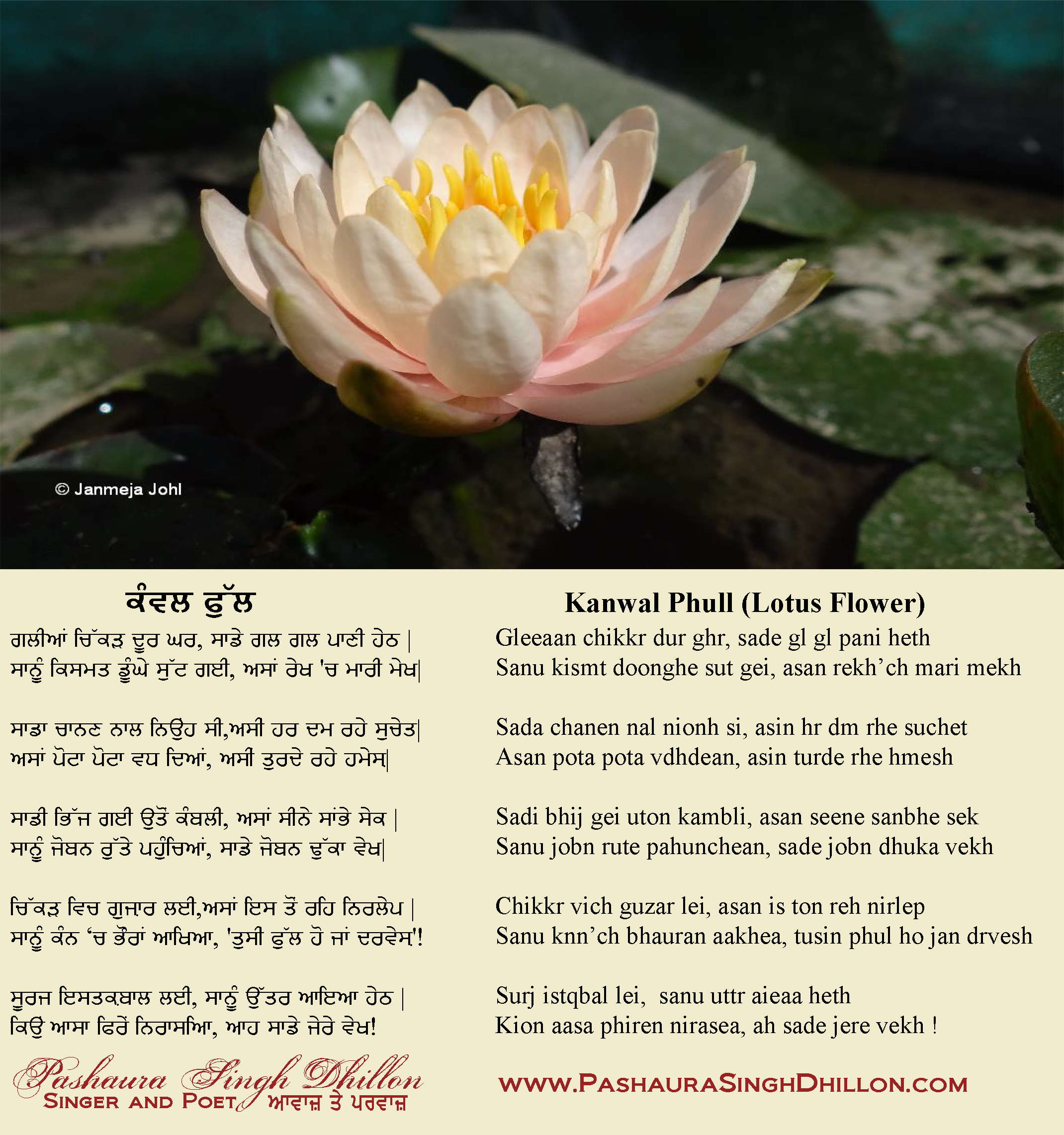 Lotus Poems