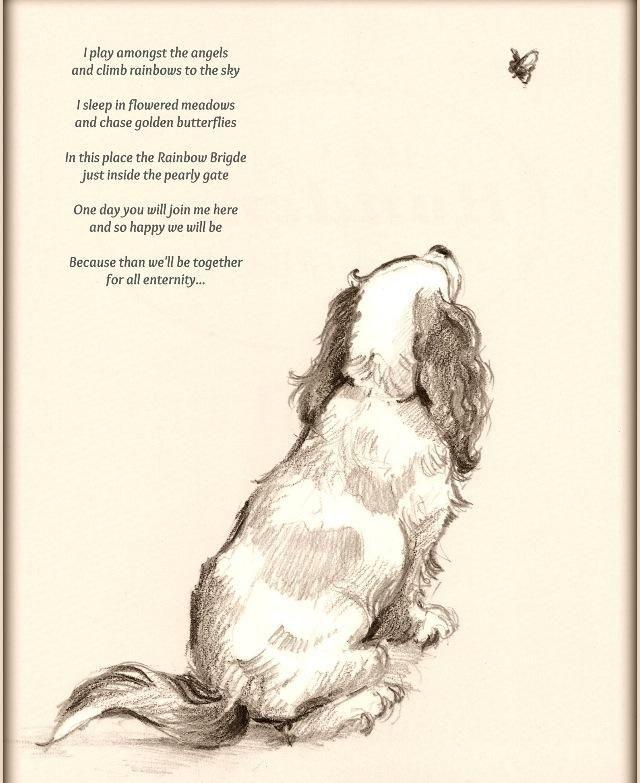 Love Dog Poems