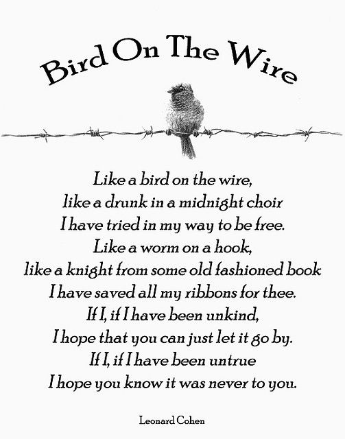 "a poem on birds and men essay List of possible essay question on of mice and men for students,  10 question on ""of mice and men  according to burns poem,."