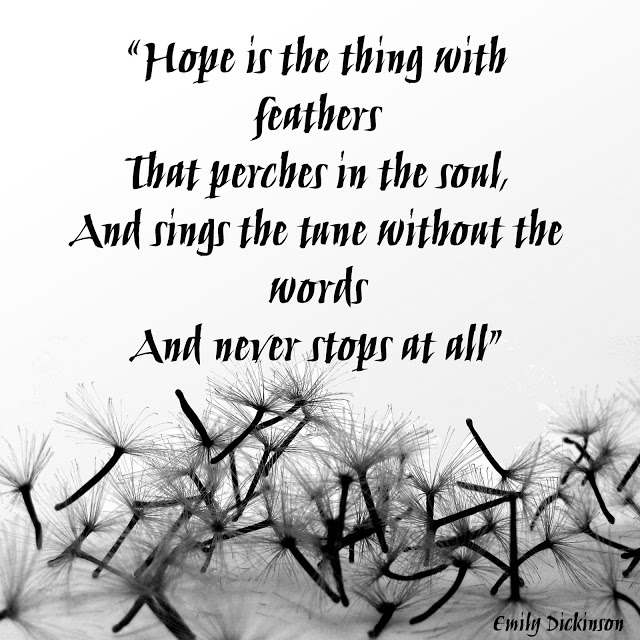 the meaning of hope in emily dickinsons poetry In this lesson, we will examine the life of emily dickinson and the major themes of her poetry from there, we will focus on her poem 'hope is the thing with feathers' and discuss how it relates.