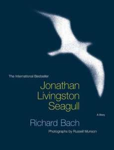 Seagull reader essays