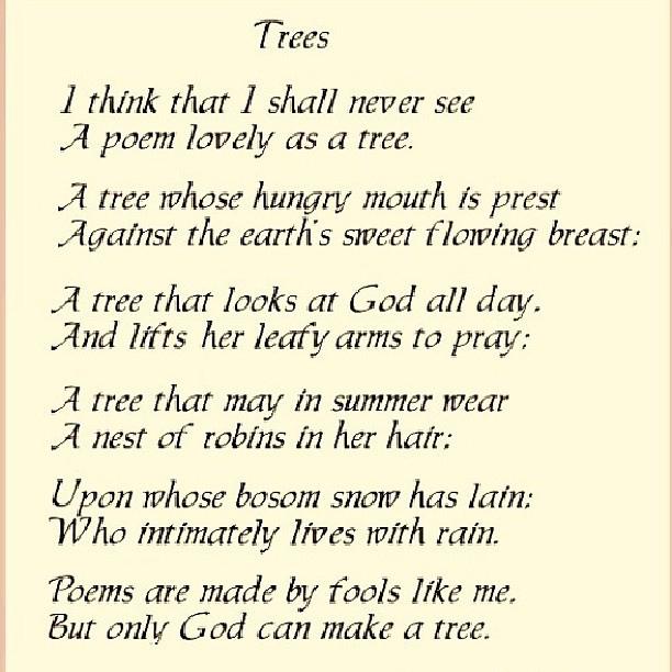 Parenting Poems