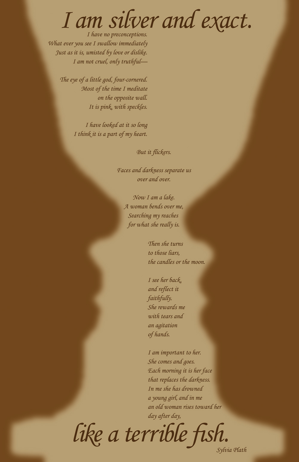 literary devices in the poem mirror by sylvia plath