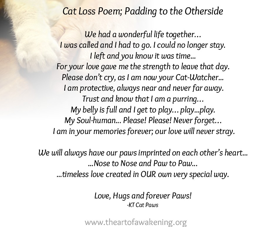 Cat loss Poems