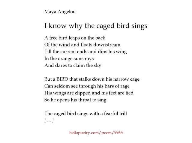 analysis essay on i know why the caged bird cannot read I know why the caged bird cannot read essay popular dissertation methodology editing websites for universityphd proposal sample social scienceessays on literaturemy education at isothermal community college, argumentative persuasive essayshow to write a biographical analysis essaycompare contrast essay thesis statement examples.