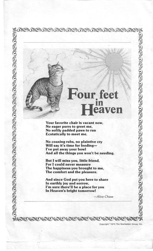Cat loss Poems