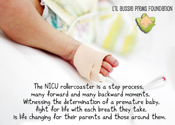 Nicu Poems