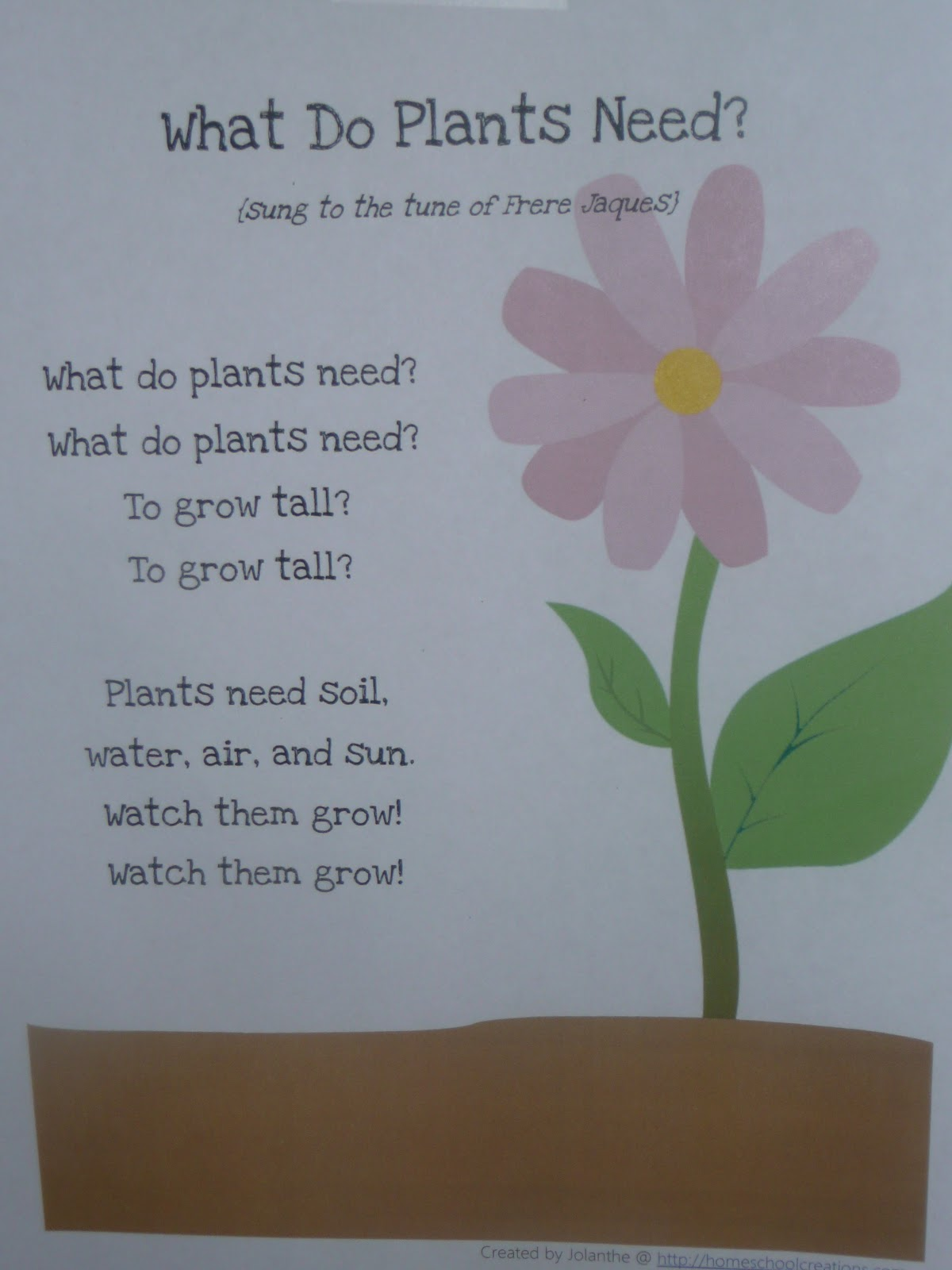 worksheet What Plants Need To Grow Worksheet Ks1 plants poems