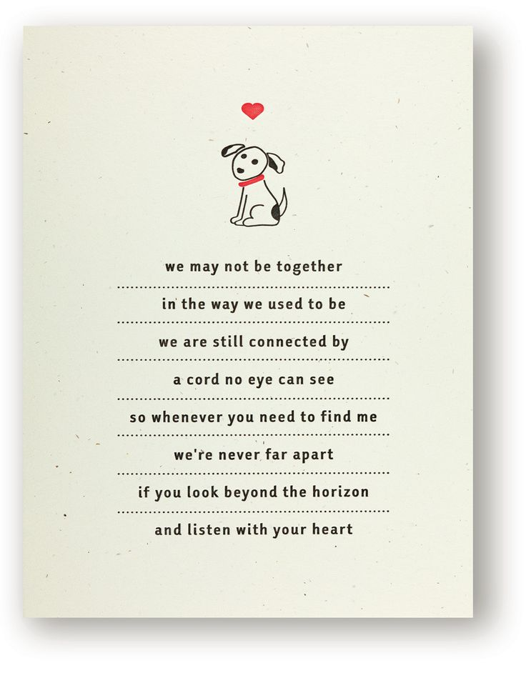 Pet Bereavement Poems Magnificent Losing A Loved One Quote