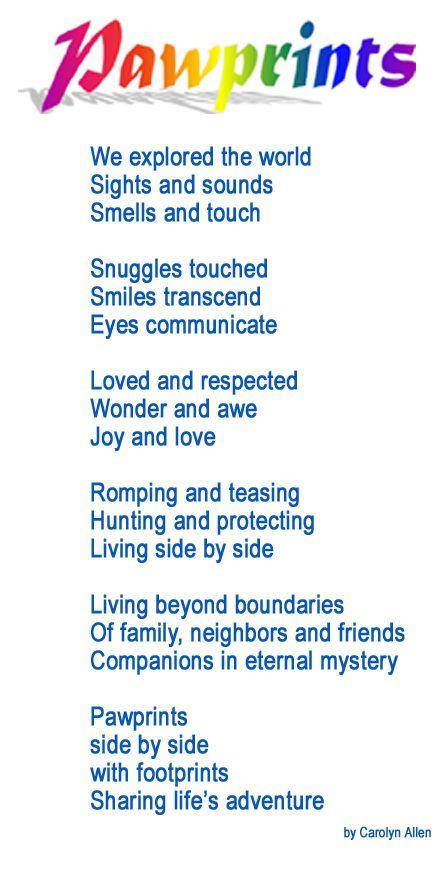 picture about Rainbow Bridge Poem for Dogs Printable called Puppy Poems