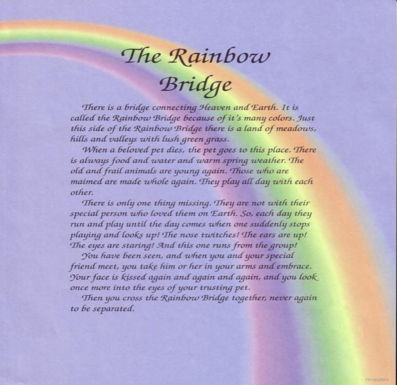 Rainbow bridge Poems