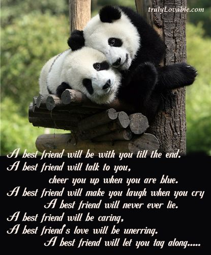 Sad Friend Poems Gorgeous Friend Quotes That Make You Cry