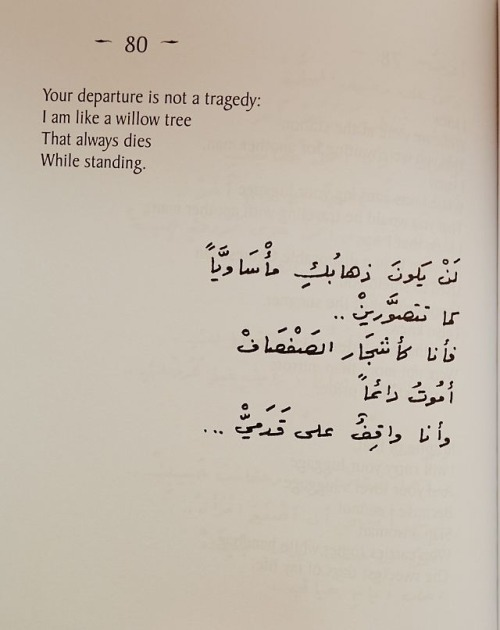 I Love You In Arabic, Tumblr