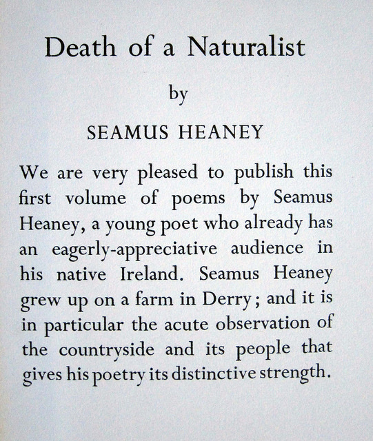 mid term break by seamus heaney essays Break, by seamus heaney, is a free-verse poem that portrays the event in which the speaker, who came back from boarding school, deals with the loss language patterns: seamus heaney's choice of words in this poem is what made the poem so special the phrase it was a hard blow and the line.