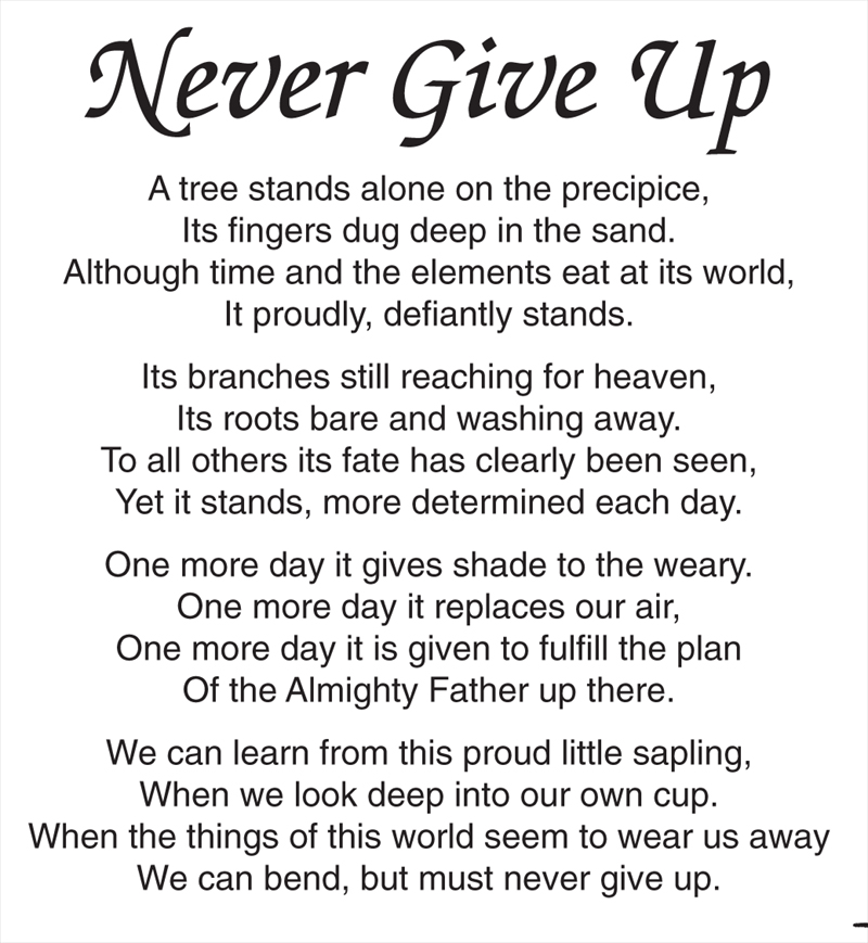 Never Give Up Poems