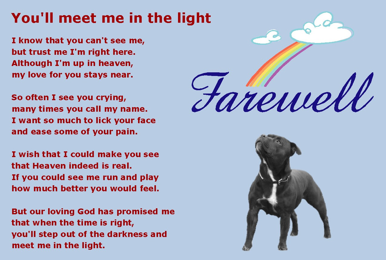 Rip dog Poems