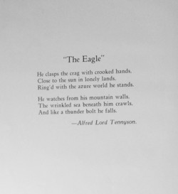 a comparison of the similarities between the eagle by alfred lord tennyson and hawk roosting by ted  Hawk roosting - ted hughes 27 terms tukehanna  a comparison of two unlike things to suggest a likeness  alfred lord tennyson william blake to the nile.